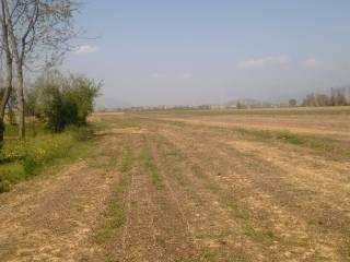 Foto - Terreno agricolo in Vendita a Sulbiate