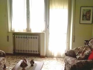 Foto - Appartamento buono stato, Ostra Vetere