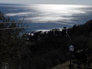 Foto - Villetta a schiera 4 locali, buono stato, Zoagli