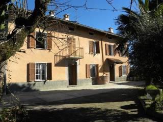 Foto - Rustico / Casale, da ristrutturare, 11365 mq, Rocca D'Arazzo