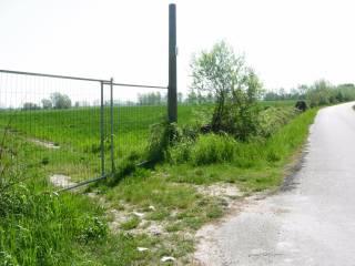 Foto - Terreno agricolo in Vendita a Mira