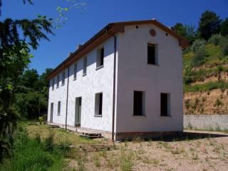 Foto - Rustico / Casale via Piazzanese, Borgo A Buggiano, Buggiano