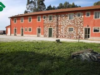 Foto - Rustico / Casale via del Fagiano, 7, Ospedaletto, Pisa