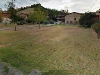 Foto - Rustico / Casale, da ristrutturare, 180 mq, Castelvetro Di Modena