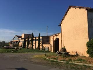 Foto - Rustico / Casale, ottimo stato, 1500 mq, Novi Ligure