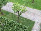 Villa Affitto Quinto Vicentino