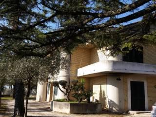 Foto - Villa Contrada SSan Crocifisso, Treia