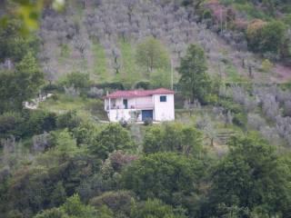 Foto - Villa via Farense 13, Toffia