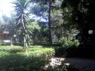 Foto - Appartamento viale De Laurentis, Bari