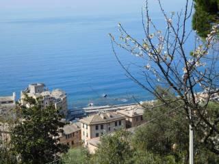 Foto - Villa, buono stato, 180 mq, Camogli