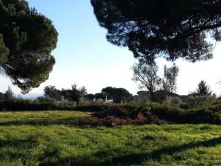 Foto - Terreno edificabile commerciale a Velletri