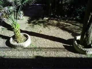 Foto - Monolocale buono stato, piano rialzato, Rosignano Marittimo
