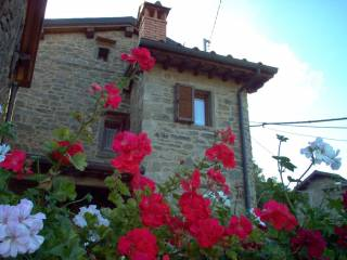 Foto - Casa indipendente 52 mq, ottimo stato, Raggiolo, Ortignano Raggiolo
