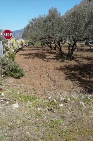 Terreno Agricolo in vendita a Altofonte, 9999 locali, prezzo € 65.000 | Cambio Casa.it