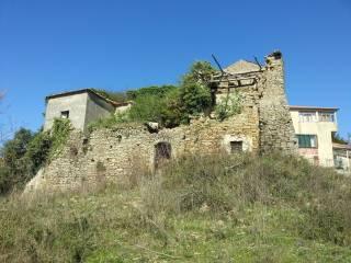 Foto - Terreno agricolo in Vendita a Prignano Cilento