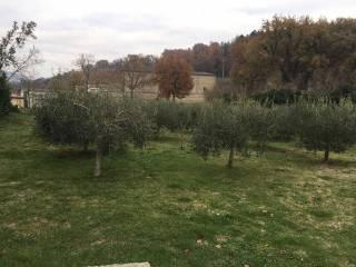 Foto - Rustico / Casale 280 mq, Vocabolo Poggio San Dionisio, Valfabbrica