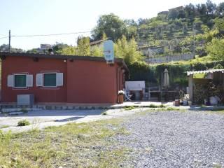 Foto - Villa Strada Ciosa 42, Imperia