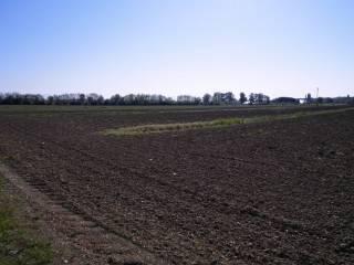 Foto - Terreno agricolo in Vendita a Bagnaria Arsa