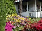 Villa Affitto Veniano