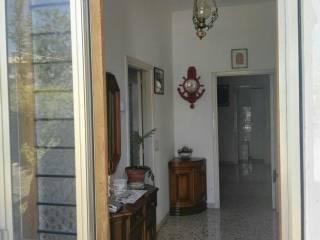 Foto - Appartamento viale della Libertà 60, Monte Porzio