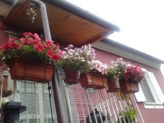 Foto - Appartamento via Castellazzo, Montalbano, La Spezia