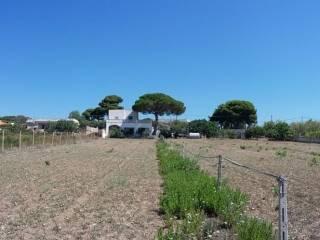 Foto - Villa, buono stato, 120 mq, Pulsano