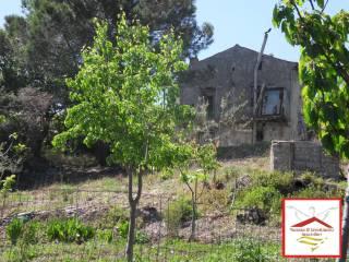 Foto - Rustico / Casale, da ristrutturare, 1170 mq, Trecchina