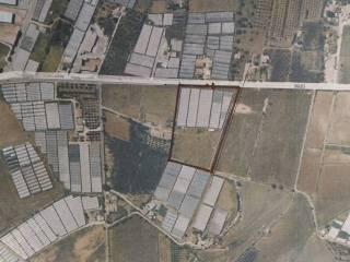 Foto - Terreno agricolo in Vendita a Santa Croce Camerina