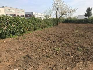 Foto - Terreno agricolo in Vendita a Biassono