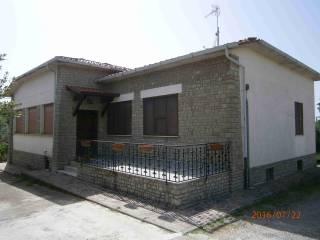 Foto - Casa indipendente 160 mq, buono stato, Rigutino, Arezzo