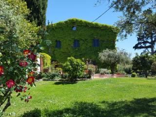 Photo - Farmhouse via delle Pantanelle, Ciampino