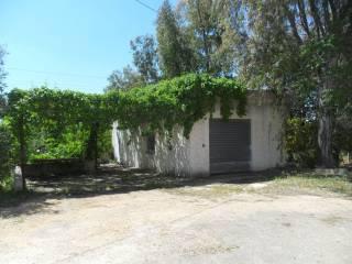 Foto - Rustico / Casale, da ristrutturare, 4840 mq, Polignano A Mare