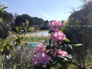 Foto - Villa, buono stato, 128 mq, Montalto Marina, Montalto Di Castro