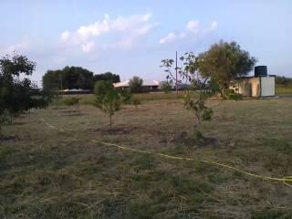Foto - Terreno agricolo in Vendita a Augusta