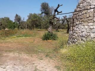 Foto - Terreno agricolo in Vendita a Ugento