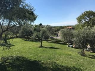 Foto - Terreno edificabile residenziale a Manziana