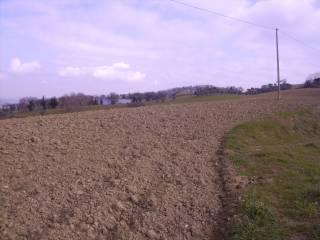 Foto - Terreno agricolo in Vendita a Petriolo