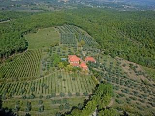 Foto - Casa indipendente via dei Pianelli, 1, Pergine Valdarno
