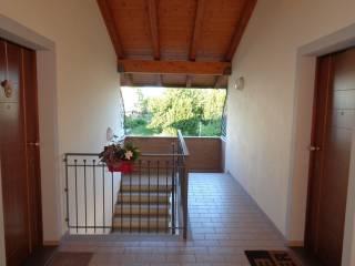 Foto - Trilocale nuovo, Sammardenchia, Pozzuolo Del Friuli