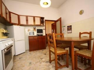 Foto - Trilocale buono stato, primo piano, Barbanella, Grosseto