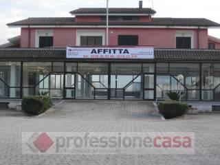 Immobile Affitto Piedimonte San Germano