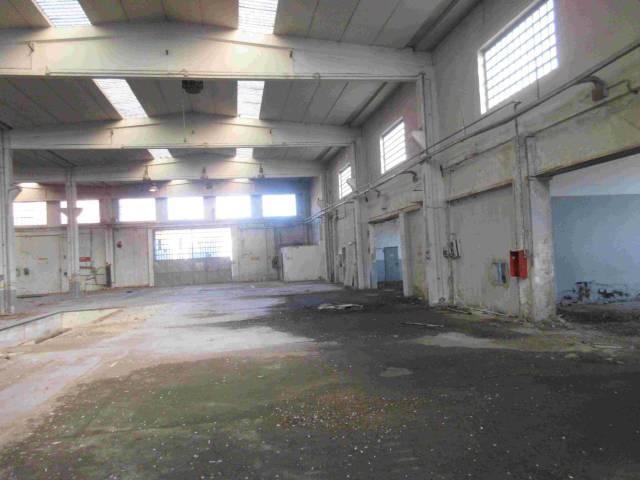 Magazzino in affitto a Torino, 2 locali, zona Zona: 14 . Vallette, Lucento, Stadio delle Alpi, prezzo € 4.200 | Cambio Casa.it
