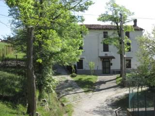 Foto - Casa indipendente 120 mq, buono stato, Monteacuto Ragazza, Grizzana Morandi
