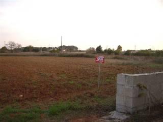 Foto - Terreno agricolo in Vendita a Poggiardo
