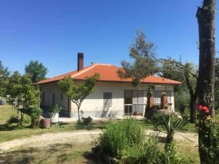 Foto - Villa, buono stato, 121 mq, Pofi