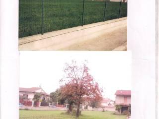 Foto - Terreno edificabile residenziale a Pietramelara