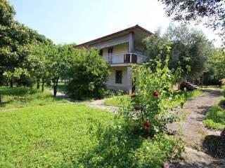 Foto - Villa, da ristrutturare, 266 mq, Volta Mantovana