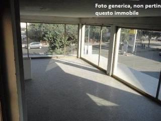 Immobile Affitto Pontedera