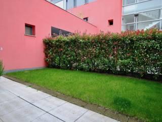 Foto - Appartamento ottimo stato, piano terra, Castelgomberto