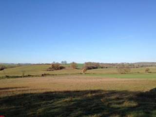 Foto - Terreno agricolo in Vendita a Celleno